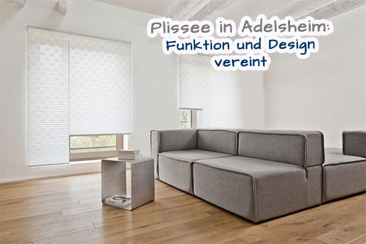plissee nach ma in adelsheim. Black Bedroom Furniture Sets. Home Design Ideas